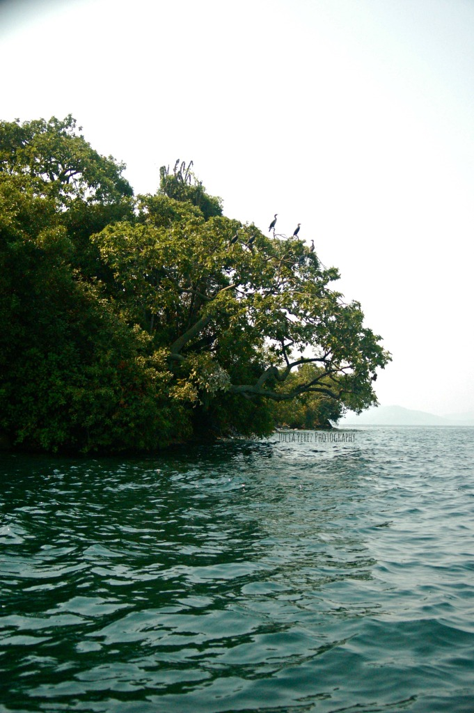 Kibuye Boat Tour 6_JPP